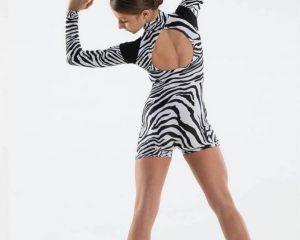 Accademico danza zebra